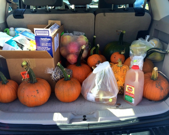 Pumpkins in the back of a car